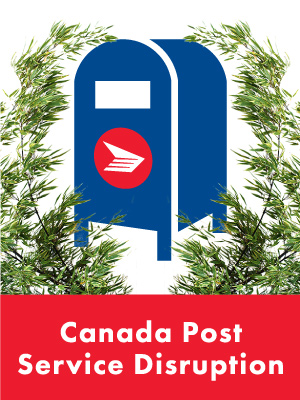 DianeKennedy_CanadaPost_Blog